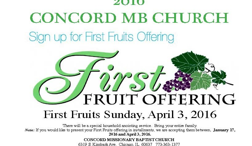 First Fruit Flyer 2016